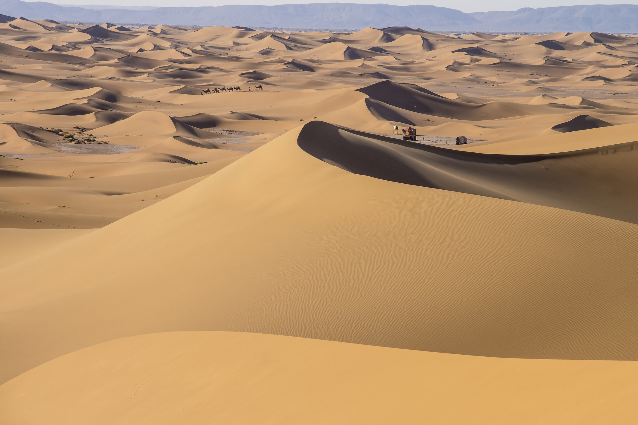 Open sandy desert with smooth dunes that go for miles