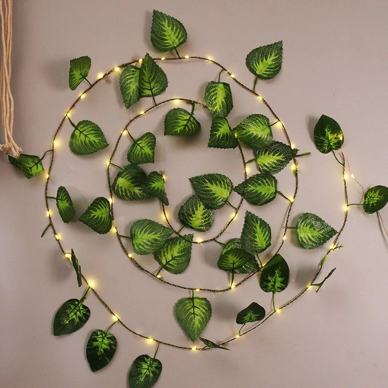 A string light vine