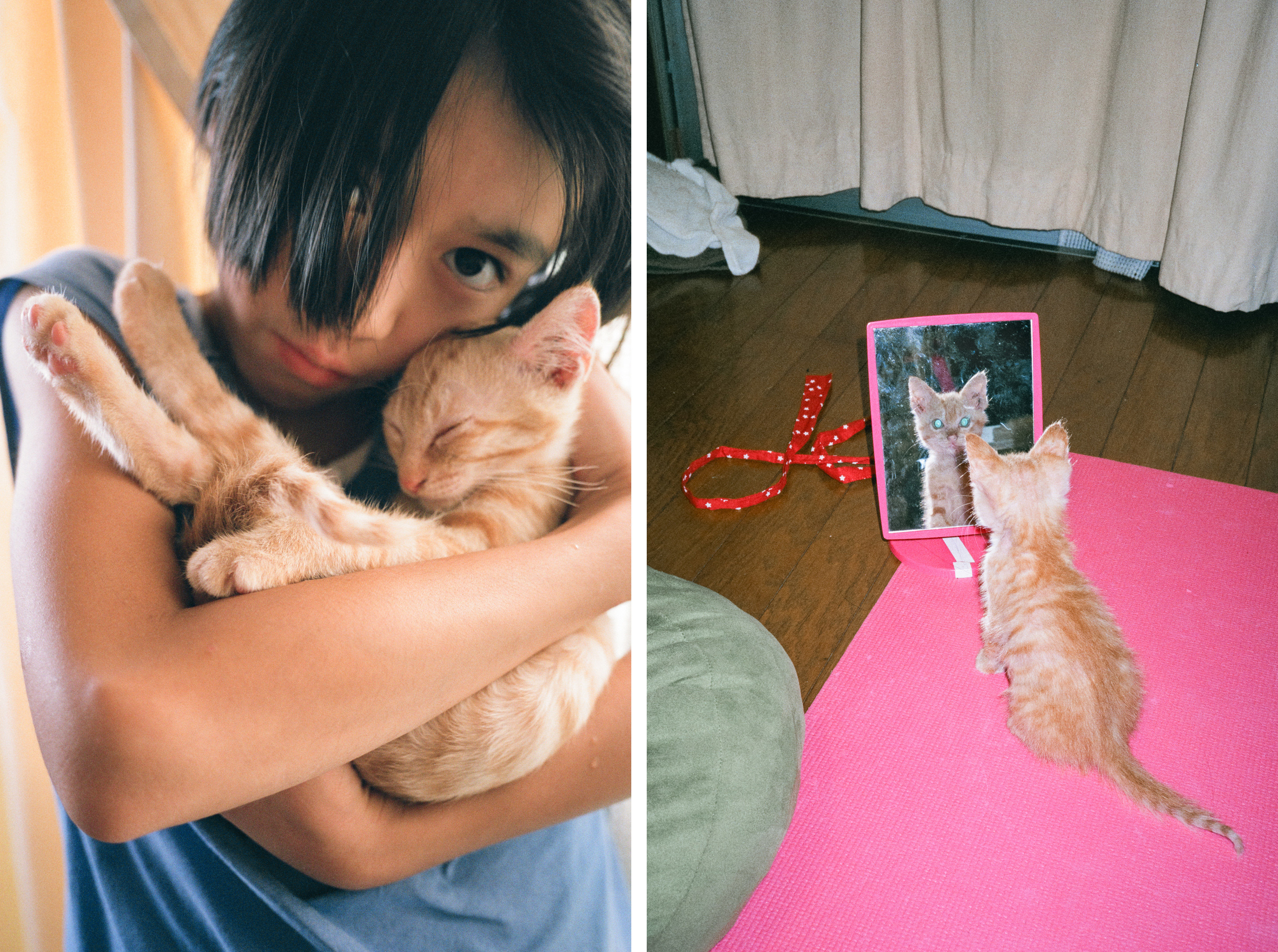 The photographer's daughter with a cat on the left, and the cat staring in a mirror on the right