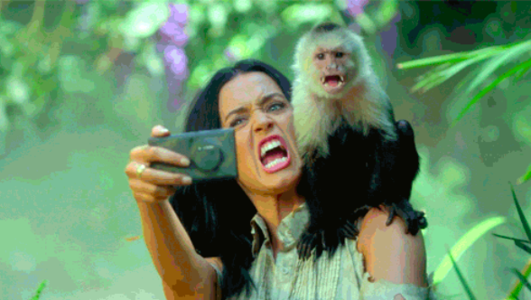 Katy Perry takes a selfie with a monkey
