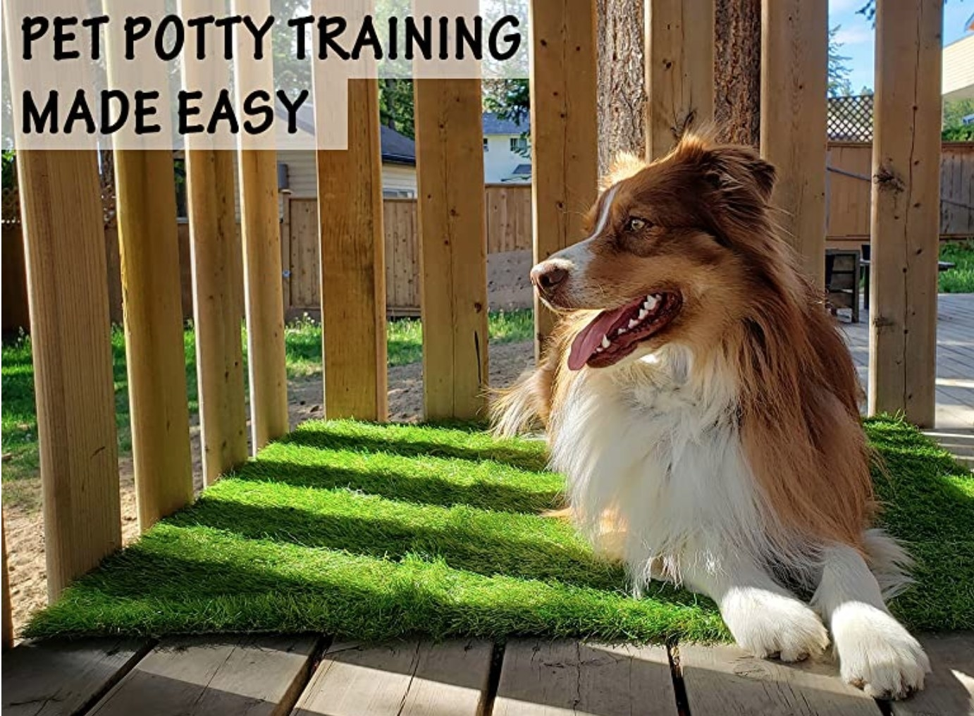 A dog on an artificial grass patch being used as a training pad outdoors on a patio