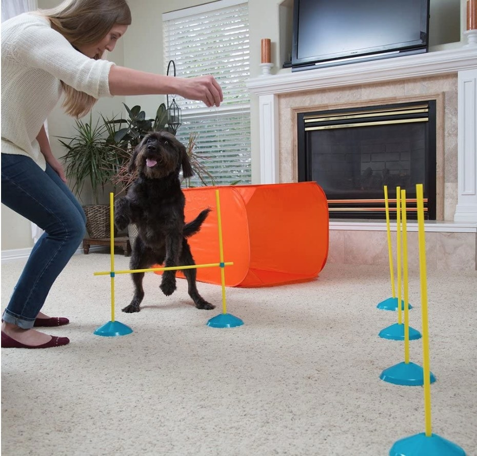 A model training her puppy using the interactive agility set in their home