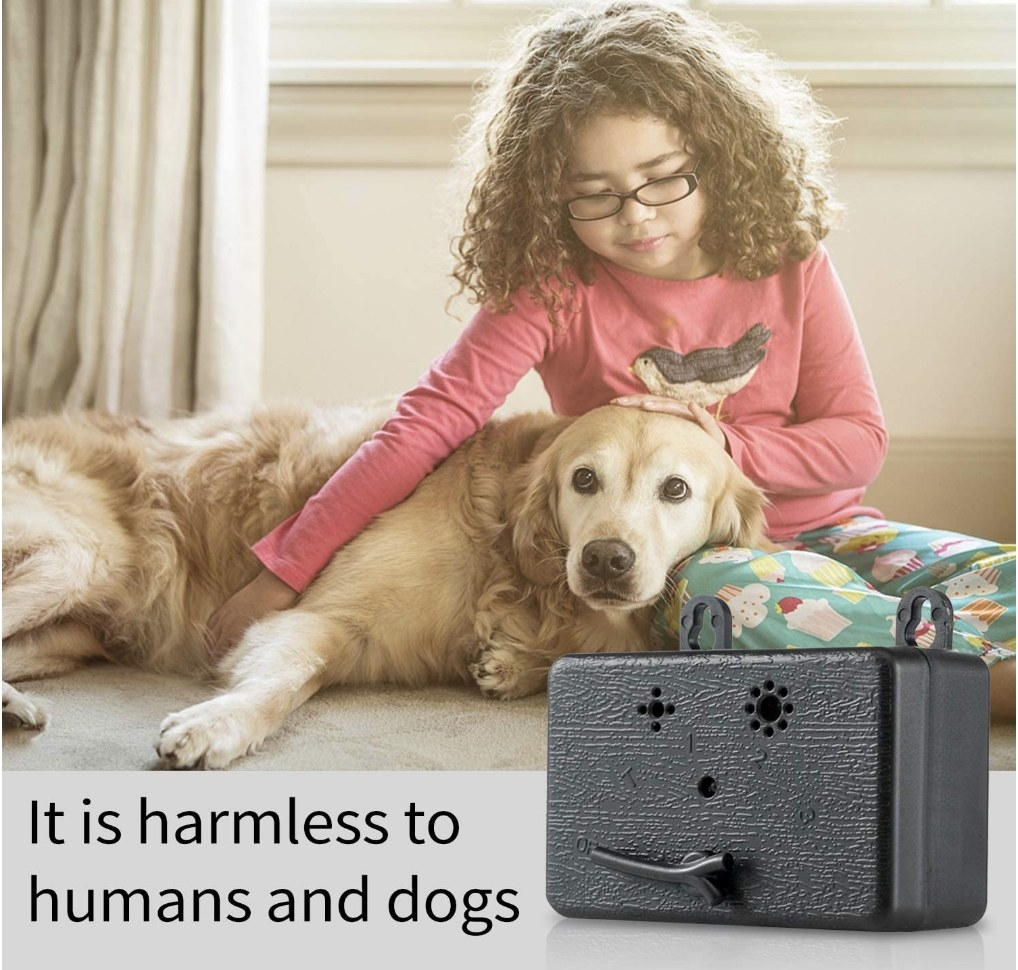 A model with her dog next to the anti-barking device that is safe for both humans and dogs