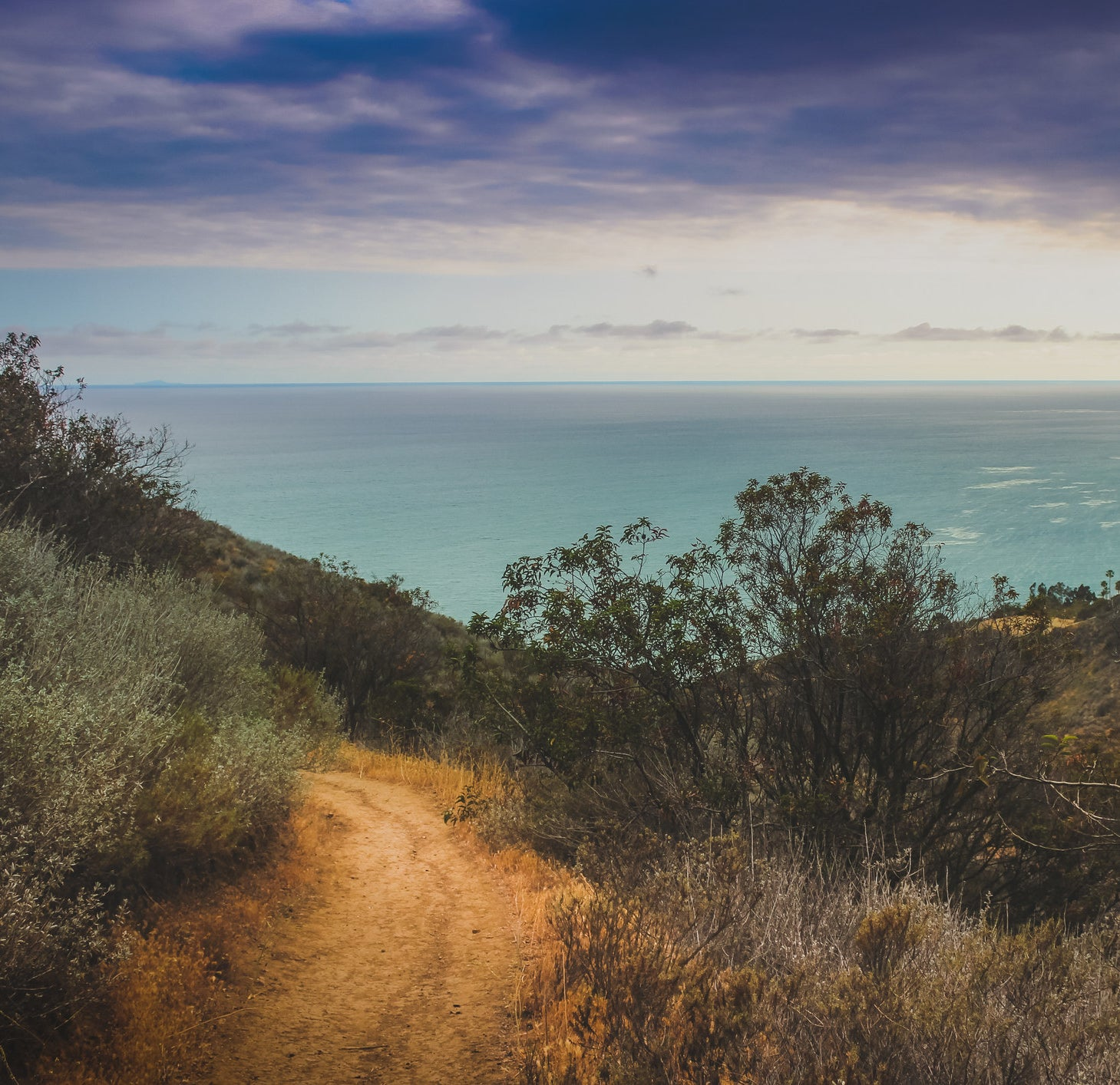 Dramatic clouds and coastline view of the Pacific Ocean from a dirt hiking trail
