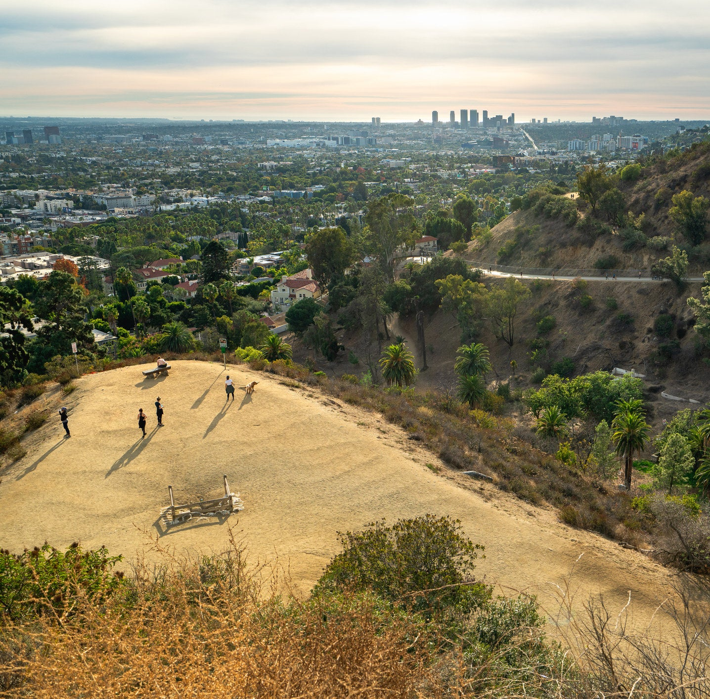 aerial shot of a hiking trail leading to the top of a hill, surrounded by lush trees and overlooking the LA city skyline