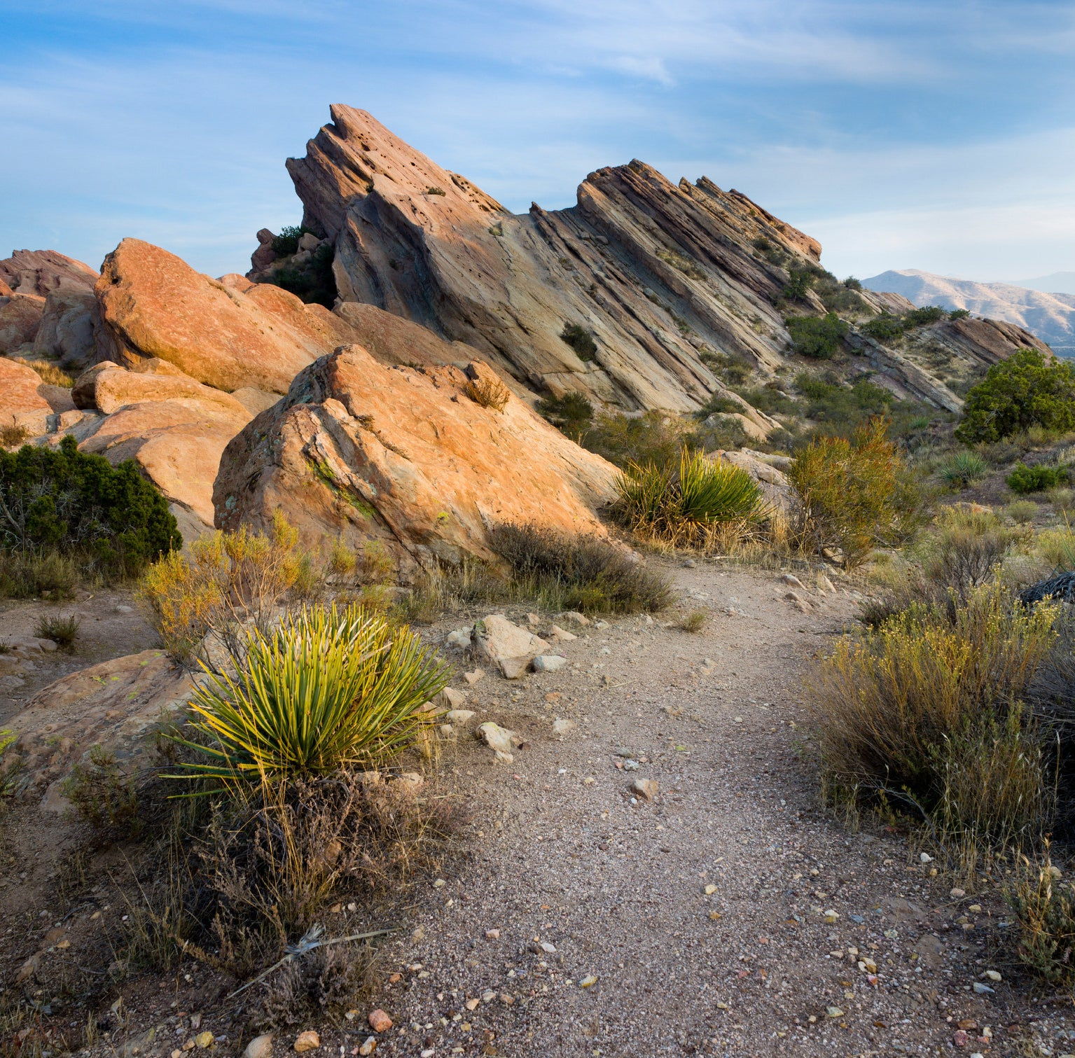 hiking trail leads to a unique jagged rock formation with short spiky shrubs at the base