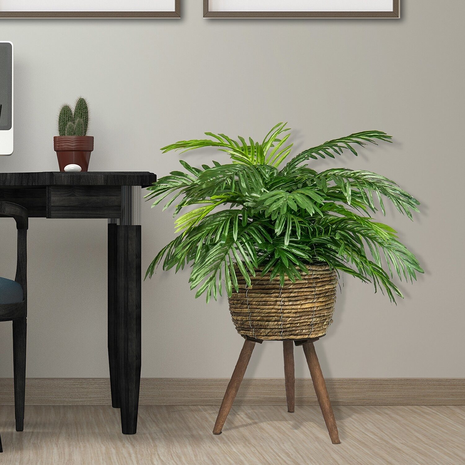 Fake plant in living room