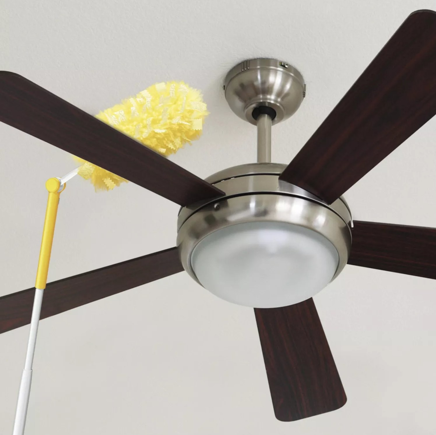 the duster dusting the top of a ceiling fan