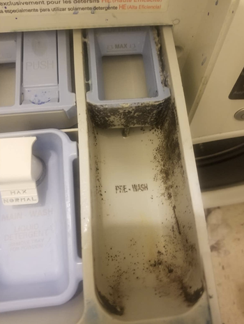 reviewers washing machine detergent pocket looking dirty