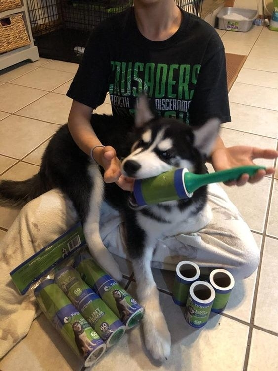 reviewer with dog biting the lint roller pack