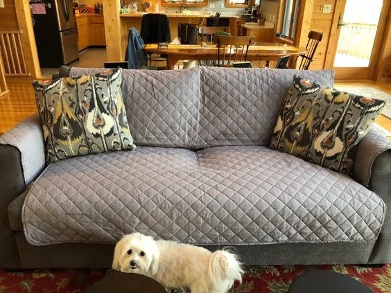 reviewer photo of the cover on the couch and a dog standing next to it