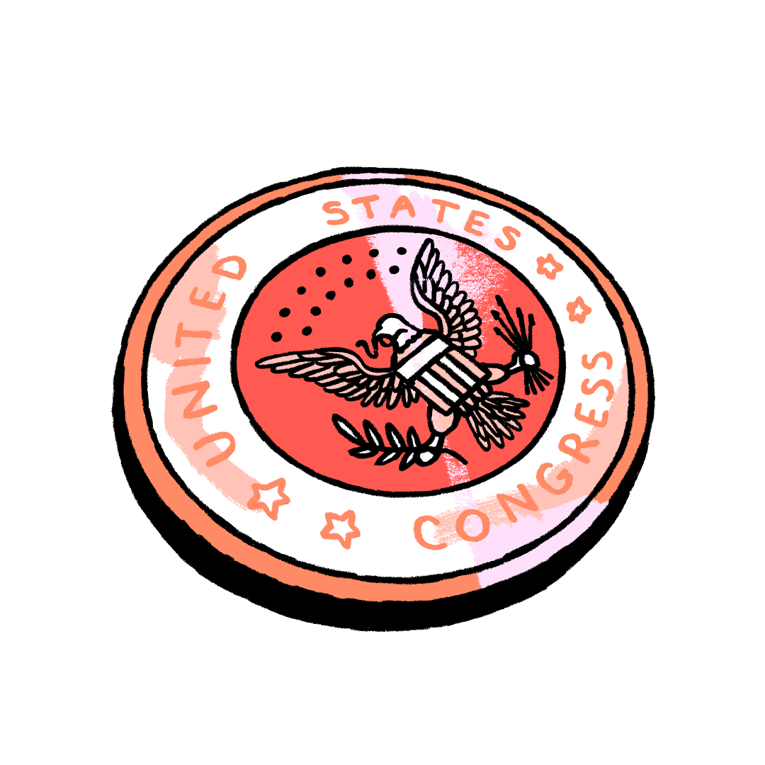 Illustration of a US Congressional pin