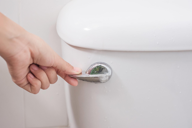 A person flushing a toilet