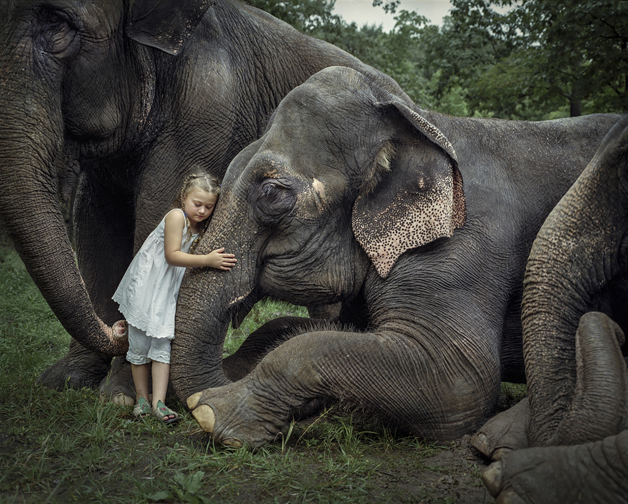 A young girl hugs the trunk of an elephant