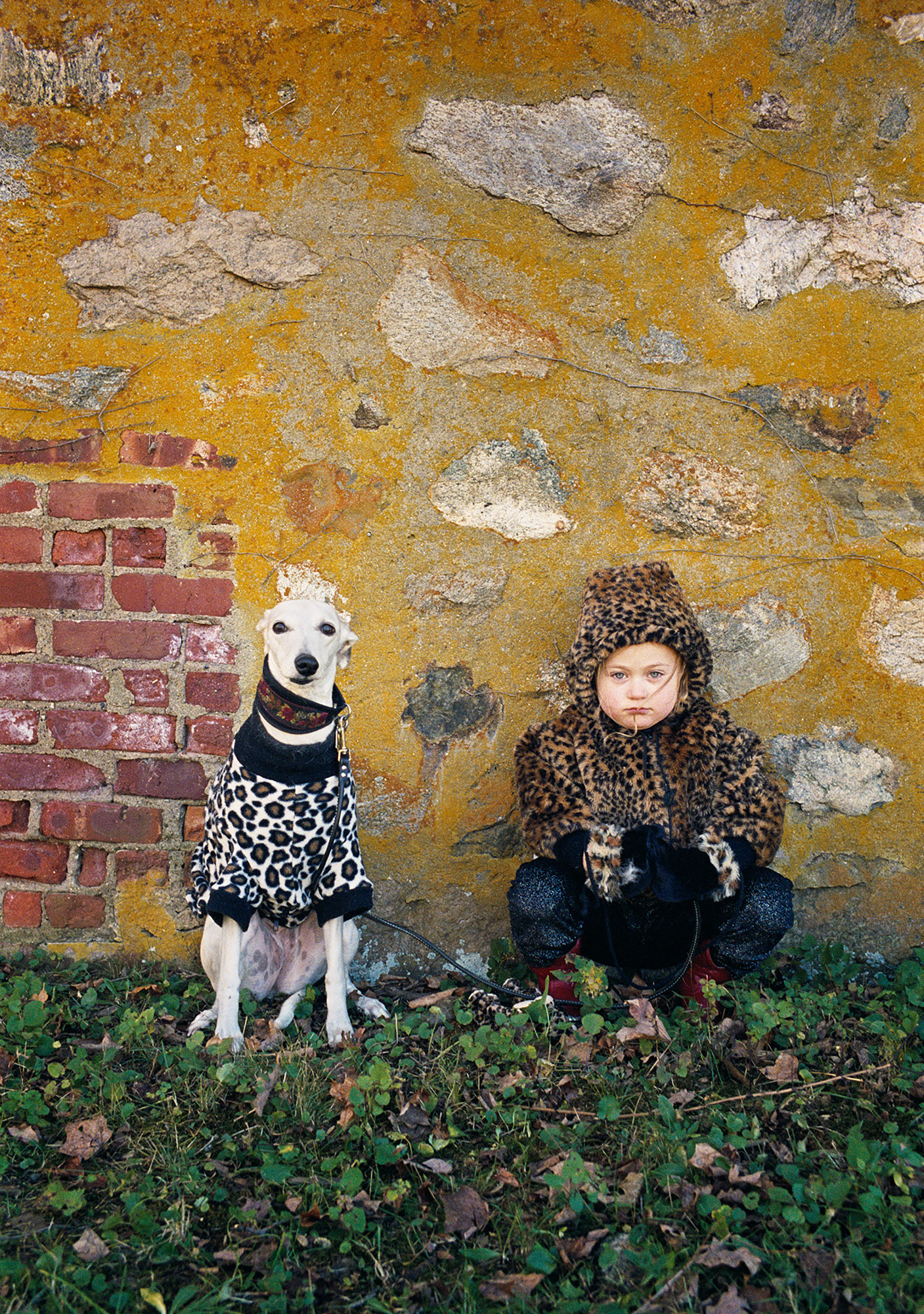 A young girl wearing a cheetah print sweater sits beside a greyhound