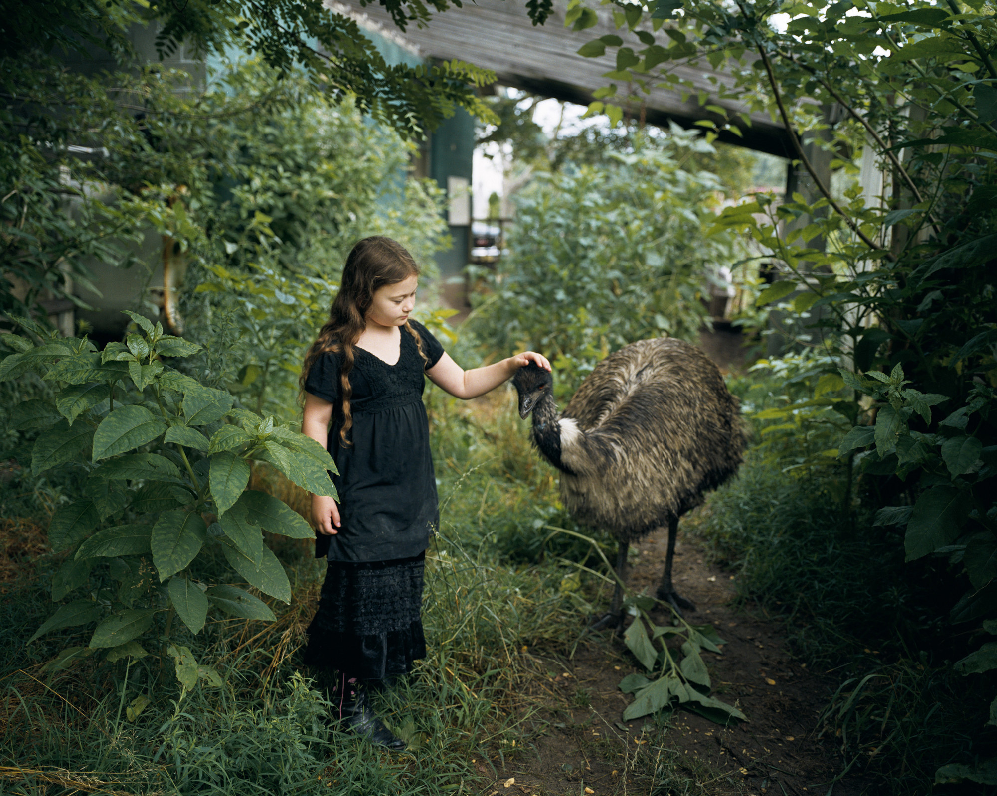 A young girl and an emu stand in a garden