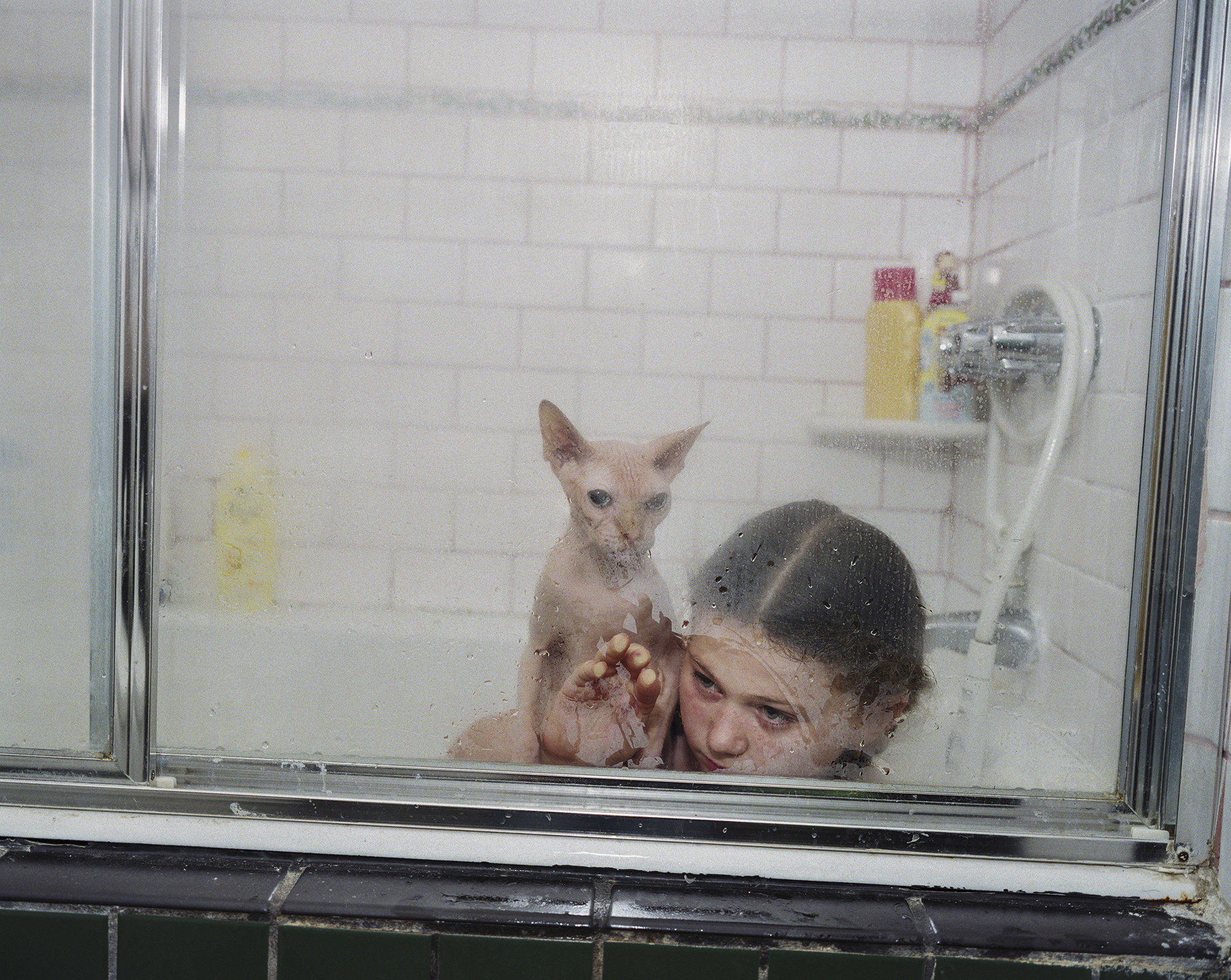The photographer's daughter Amelia with a sphynx cat in the shower