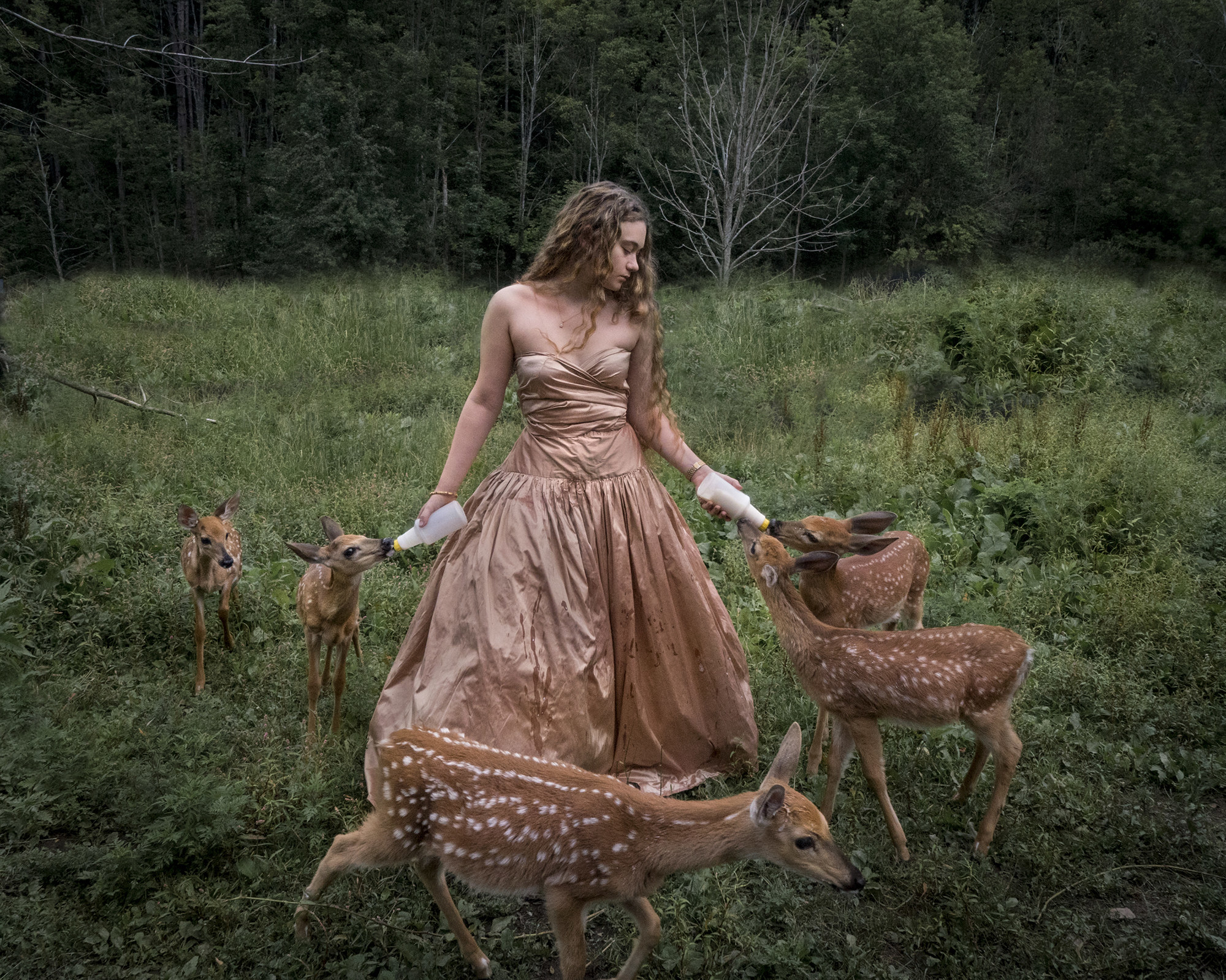A young woman bottle feeds a group of deer
