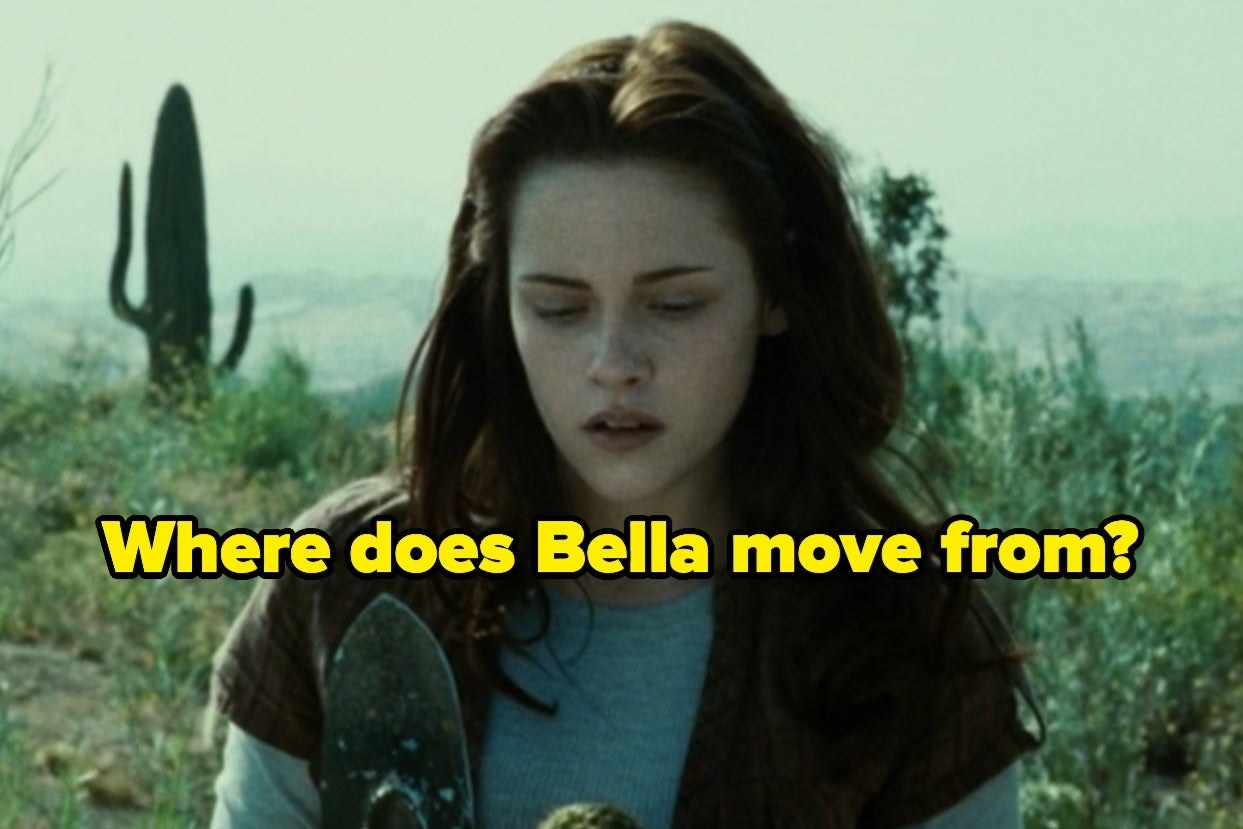"""Bella with the words """"Where does Bella move from?"""""""