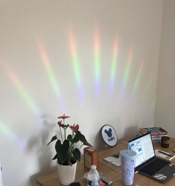 buzzfeed editor's desk surrounded by a rainbow