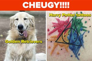"""A Golden Retriever, and a Harry Potter tattoo both labeled """"cheugy"""""""