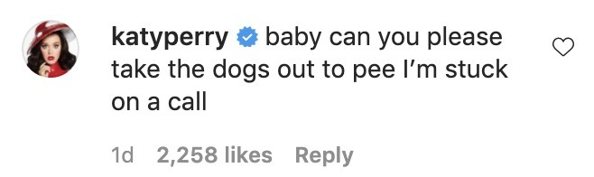 A screenshot of Katy's comment