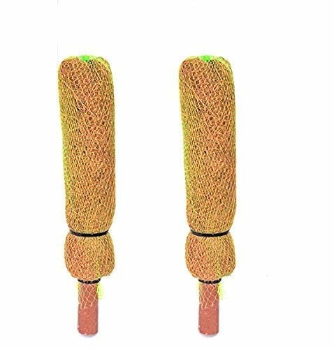 Two one-foot tall coir sticks