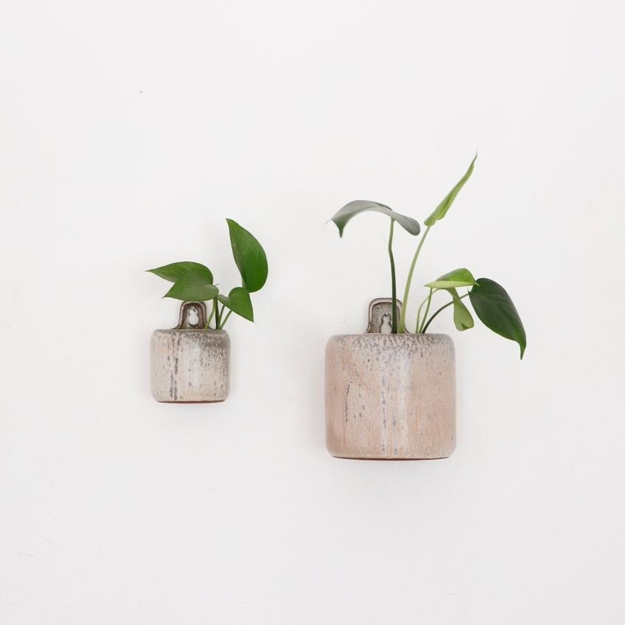 the stoneware themed wall planter with a small plant inside hanging on a wall