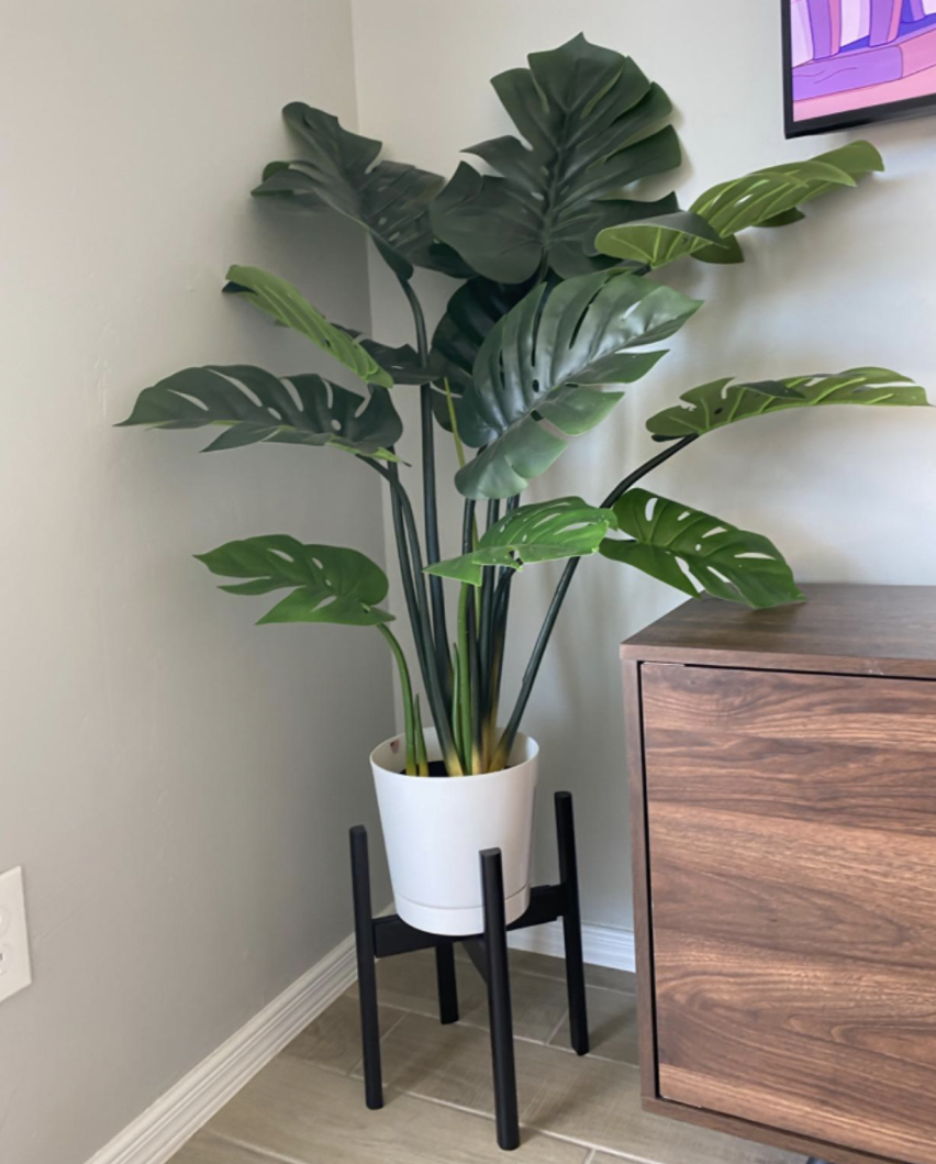 Reviewer's artificial plant on stand next to table