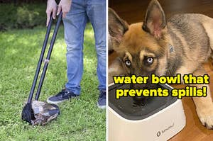 L: Model using poop scooper R: German shepherd drinking out of no-spill water bowl