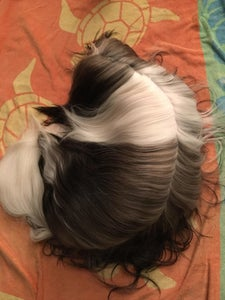 Top down shot of another reviewer's dog with fur that looks super silky thanks to the conditioner