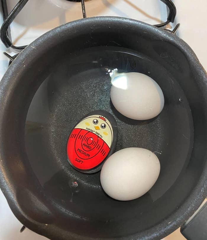 reviewer image of timer sitting in pot with two eggs boiling