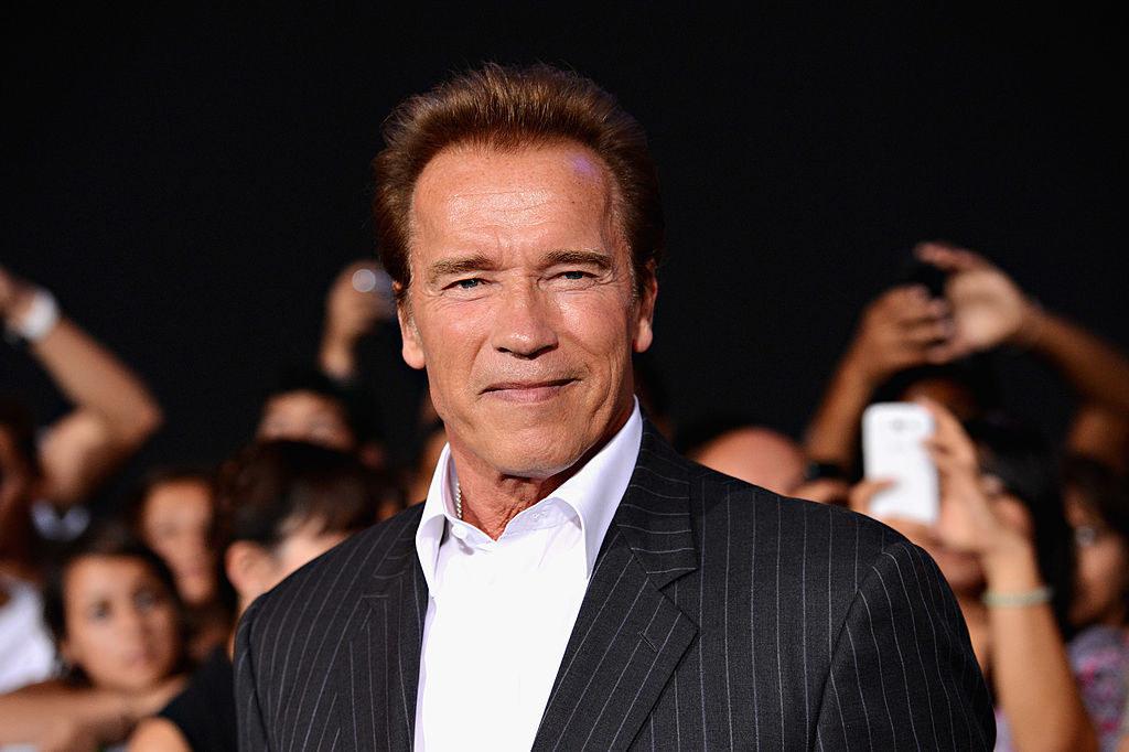 Arnold Schwarzenegger smiling amid a crowd