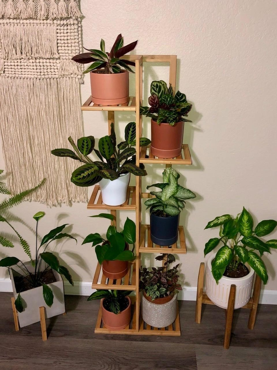 Reviewer's photo of 6-tier bamboo plant stand with plants on top
