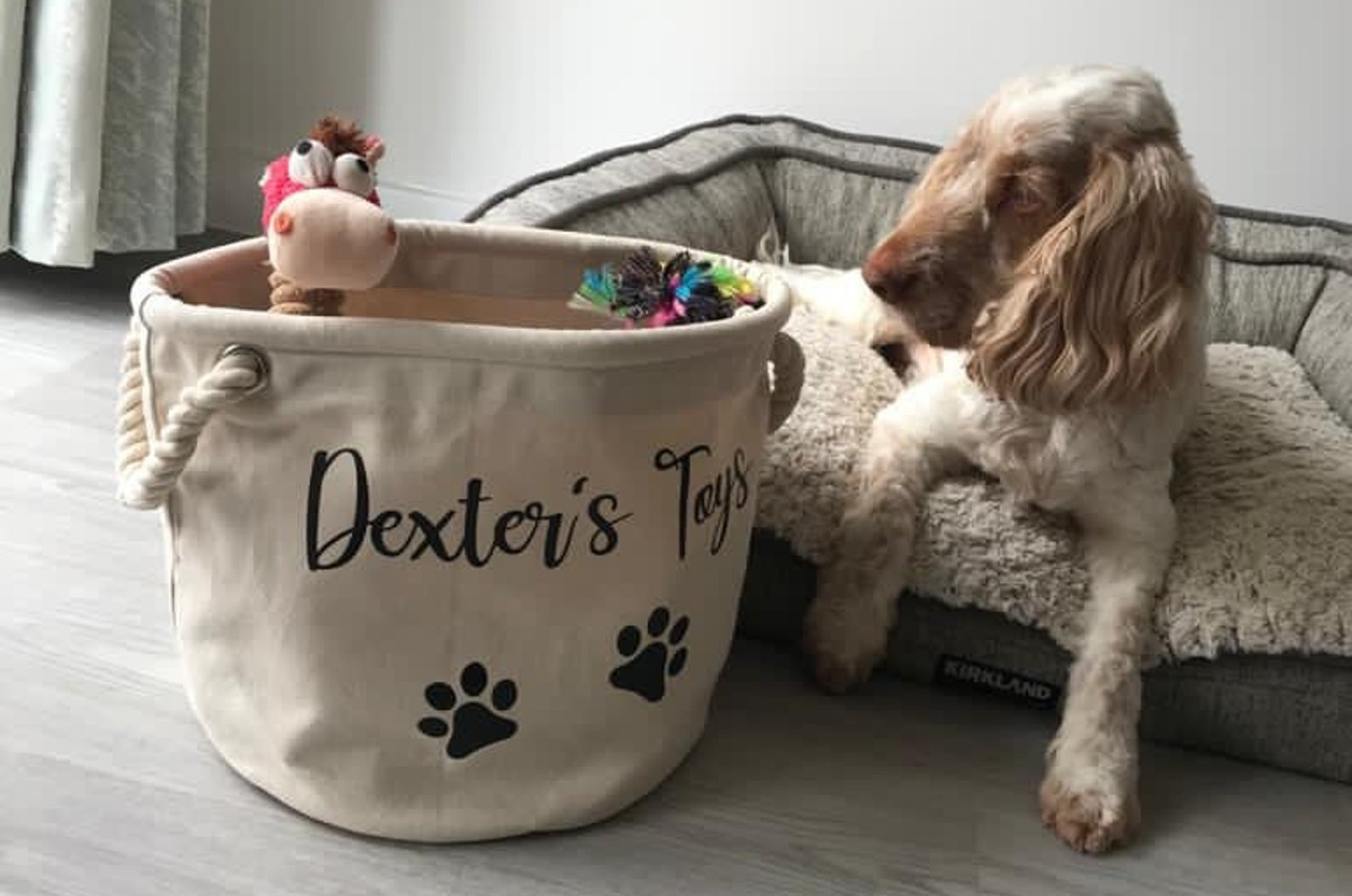 """Round canvas bag with braided rope handles that says """"Dexter's Toys"""" on the front and features two black paw prints on it"""