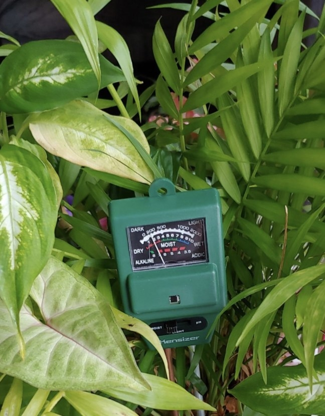 a green soil tester in a plant