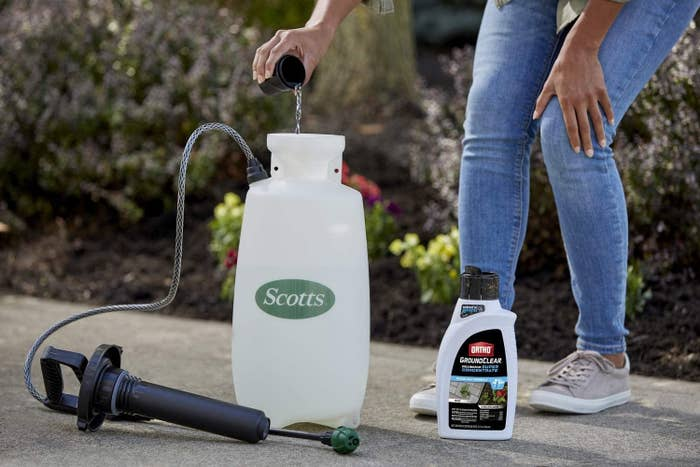 a person diluting the concentrate into a tank sprayer