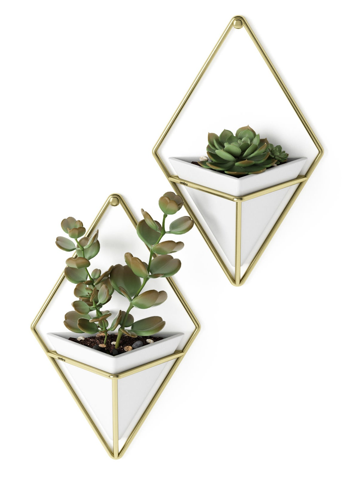 white inverted pyramid pots with gold diamond shaped hanging frame, holding succulents