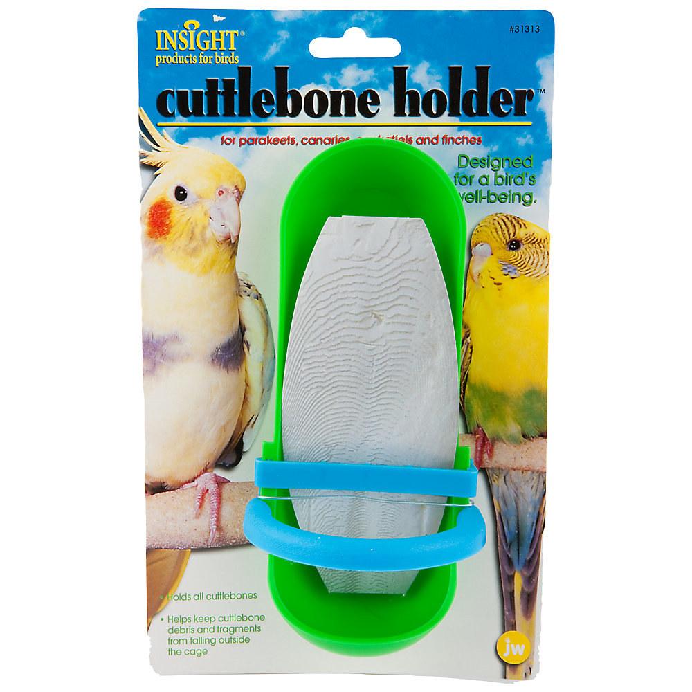 A green and blue cuttlebone holder