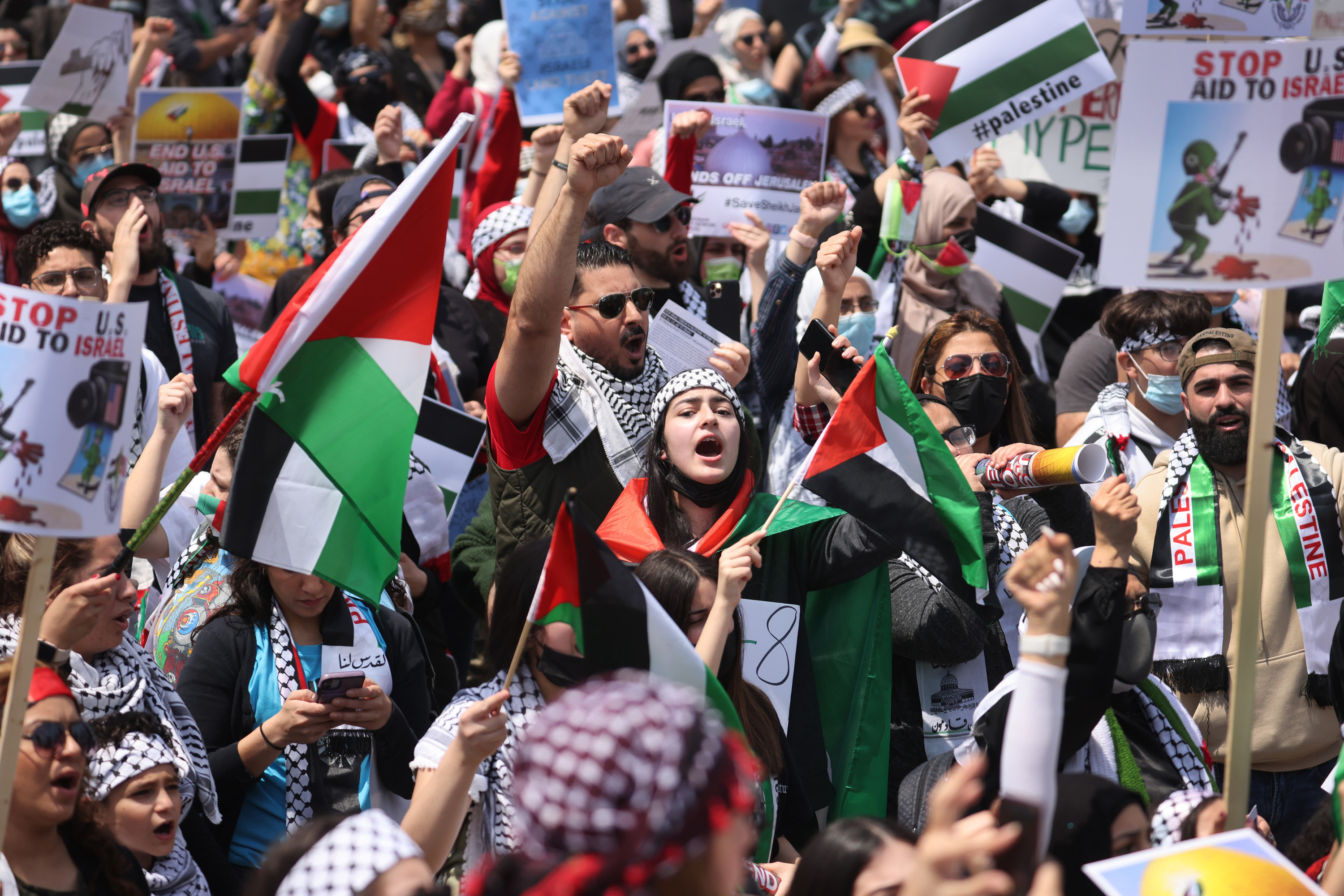 A group of people show their support for Palestine with signs and flags