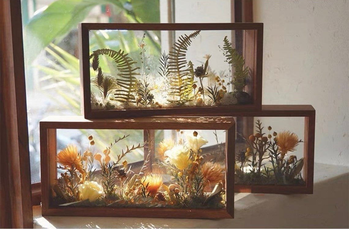 three framed pressed flower pieces in front of a sunny window