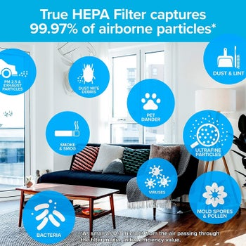 graphic showing all the things that the HEPA filter can capture