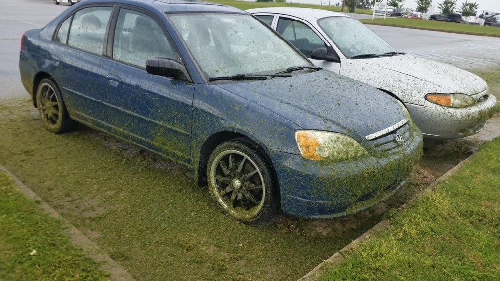 car covered in wet grass
