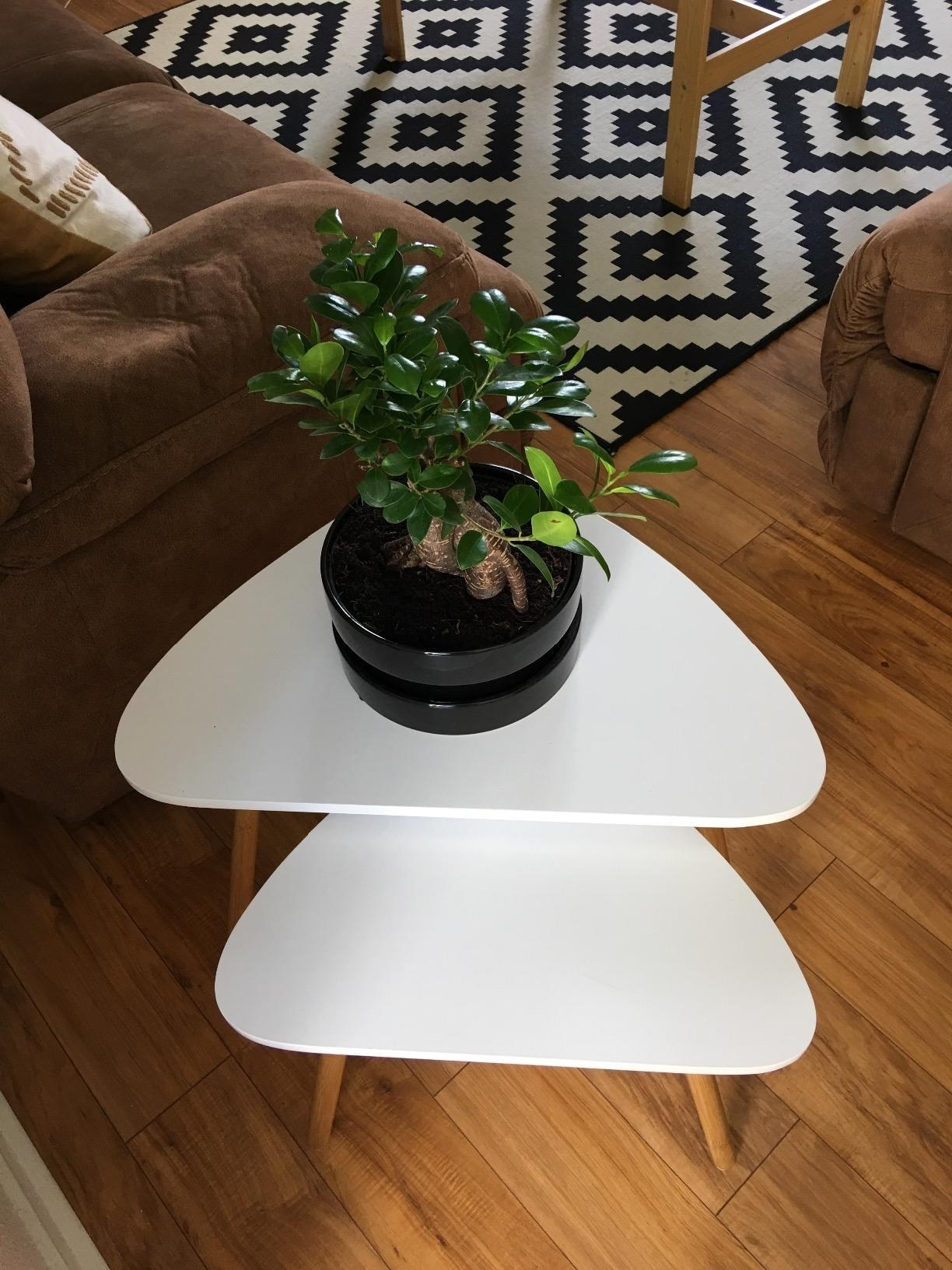 The triangular side tables in a living room clustered together, with a plant on the larger table