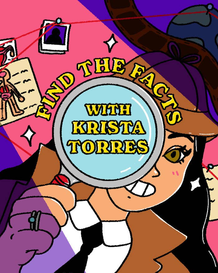 Find the Facts With Krista Torres