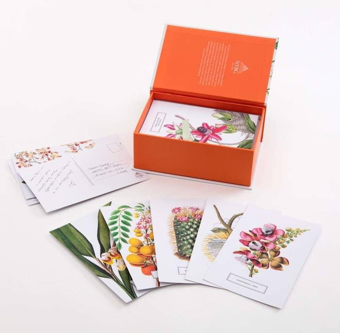 The set of botanical postcards next to their box