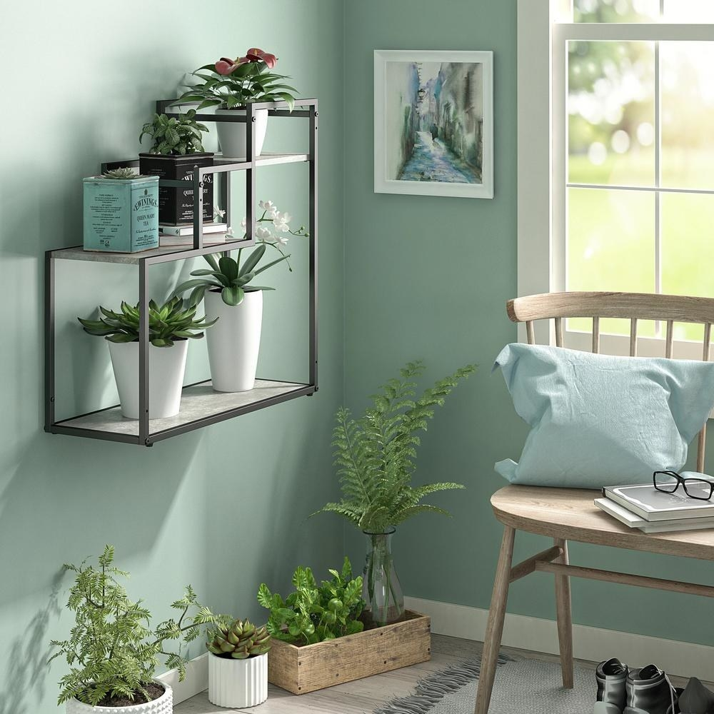 Gray and wood multi-tier plant stand with succulents hanging on wall
