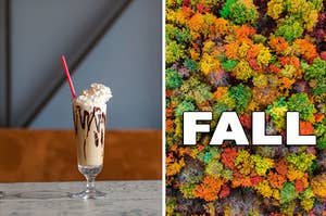 a chocolate milkshake beside an arial view of a forest in the fall