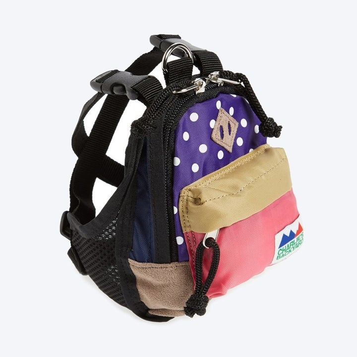 the dog backpack with a front zip pocket and polka dot print