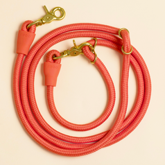 an orange color with gold-tone hardware